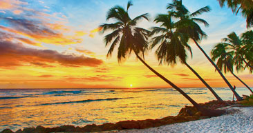 sunset on a white sand beach in barbados