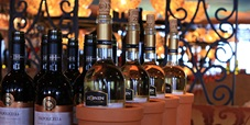 Cruise the Vineyards